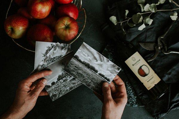 o nas stare odmiany jabłek